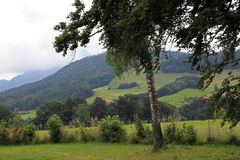 German countryside Royalty Free Stock Images