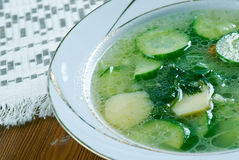 German cucumber soup Royalty Free Stock Image