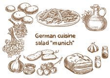 German cuisine.Salad `Munich` ingredients. Traditional Oktoberfest food. Sketch drawing Vector Illustration