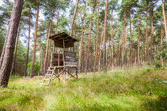 German deerstand in a forest Royalty Free Stock Image