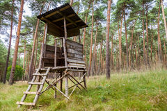 German deerstand in a forest Stock Image