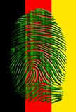 German Fingerprint. German Flag with Binary Fingerprint Stock Image
