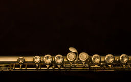 German flute Royalty Free Stock Photo