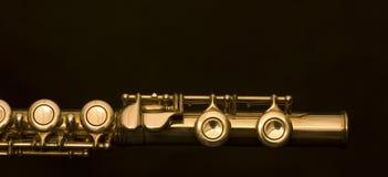 German flute Stock Image