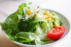 German food ruccola salad Royalty Free Stock Images