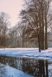 German Forest with snow and trees with still atmosphere Munich, Stock Photos
