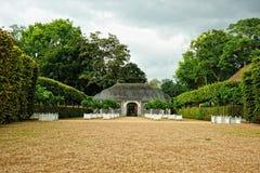 Lemon trees garden Royalty Free Stock Images