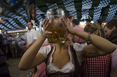 German girl drinking during Oktoberfest 2012. The Augustiner Festhalle is one of the most interesting and beautiful area of the Oktoberfest. This munich girl was Stock Images