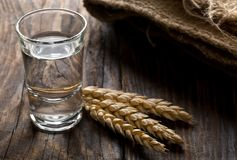 German hard liquor Korn Schnapps in shot glass with wheat ears. On rustic wooden table Stock Photos