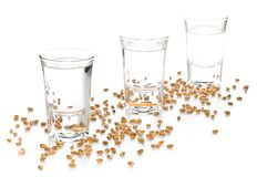 German hard liquor Korn Schnapps in shot glasses with wheat grai. Ns over white background Stock Image