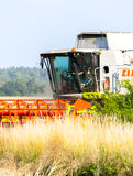 German havester Claas Lexion 650 works on a corn field Royalty Free Stock Photography
