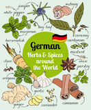 German herbs and spices. Vector set of hand drawn German herbs and spices Stock Images