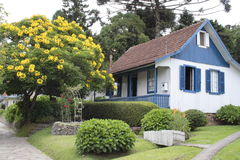 German House. A german house with a blooming yellow flowered tree in Gramado, south of Brazil Stock Photo