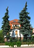 German House with big pine trees in front Royalty Free Stock Image