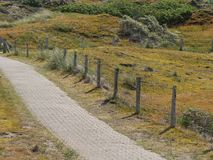 The german island of Baltrum. In the North sea stock photography