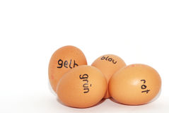 German labeled easter eggs on a white Stock Photography