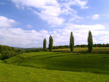German landscape. In late summer Stock Images