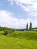 German landscape. In late summer Royalty Free Stock Photo