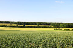 German Landscape Royalty Free Stock Photography