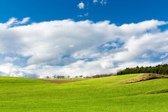 German landscape. Autumn landscape from Germany Stock Photography
