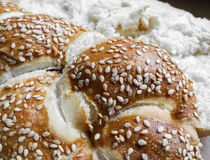 German milk brioche with sesame. Detail of german milk brioche with sesame. Delicious breakfast choice Royalty Free Stock Photo