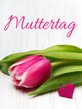 German Mother`s day card with word Muttertag Mother`s day tulip and hearts Stock Photography