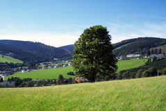 German nature. Stock Images