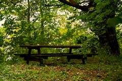German Nature autumn park Royalty Free Stock Image
