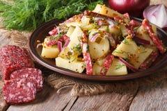 German potato salad on a plate and ingredients, horizontal Stock Image
