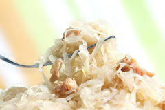 German Sauerkraut Royalty Free Stock Photography