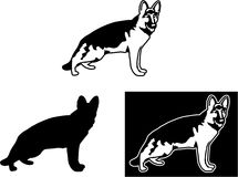 German Shepard. Vector illustration of Stylized German Shepard on white background and black background. Also as silhouette Stock Images
