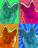 German Shepard Pop Art Royalty Free Stock Image
