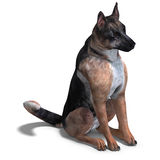 German Shepherd Dog. 3D rendering with clipping path and shadow over white Royalty Free Stock Image