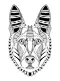 German shepherd dog head zentangle stylized, vector, illustration Royalty Free Stock Image
