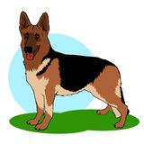 German shepherd dog illustration. German shepherd dog coloring book stile illustration stock illustration