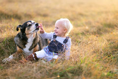German Shepherd Dog Licking the Hand of His Baby Girl Owner. A rescued German Shepherd mix breed dog is licking the hand of a baby girl as she pets him outside stock image
