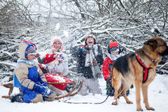 German Shepherd Dog pulling children on sleds during snow time Royalty Free Stock Image