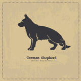 German Shepherd dog silhouette. German shepherd dog standing in profile stylized silhouette on shabby vintage background. All objects are conveniently grouped on Stock Photography