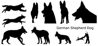 German Shepherd Dogs. Various silhouettes of German Shepherd dogs royalty free illustration