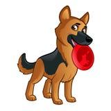 German Shepherd. Friendly dog of the German Shepherd breed Stock Photo