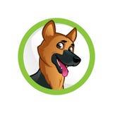German Shepherd. Friendly dog of the German Shepherd breed Stock Image