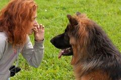 German shepherd with girl Stock Image