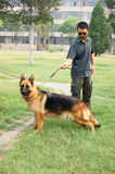 German Shepherd and men Royalty Free Stock Photo