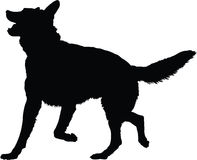German Shepherd Silhouette Stock Photography