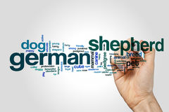 German shepherd word cloud concept Stock Image