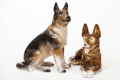 German Shepherds Royalty Free Stock Images