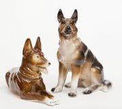 German Shepherds Stock Photography
