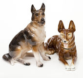 German Shepherds Royalty Free Stock Photo