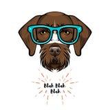 German short haired pointer nerd. Smart glasses. Dog geek. Clever dog portrait. Vector. German short haired pointer nerd. Smart glasses. Dog geek. Clever dog royalty free illustration