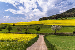 German Spring Countryside Landscape Royalty Free Stock Photos